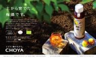 choya_yuuki